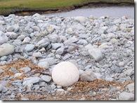 Egg Stone
